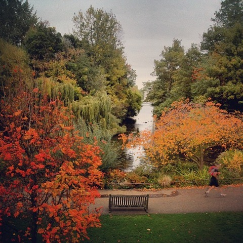 St James Park in Autumn