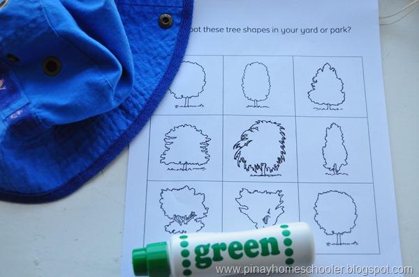 Tree Shapes Worksheet