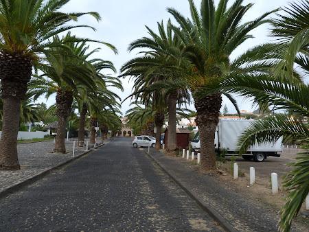 22. palmieri.JPG