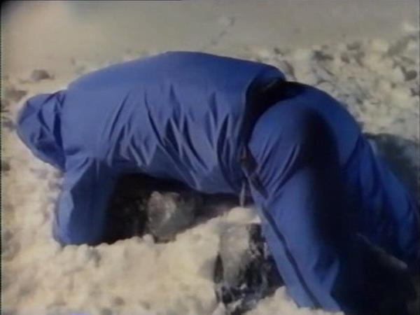 Iced 1988 Slasher film