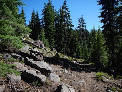 trail gates.JPG
