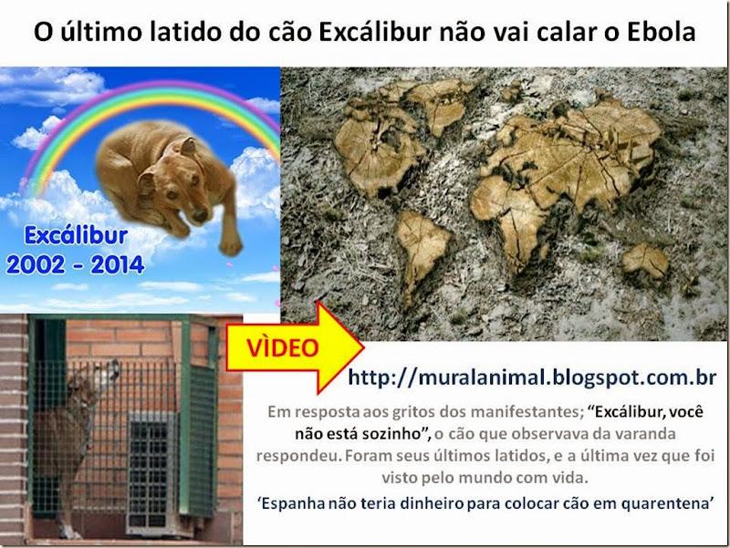 latido-excalibur