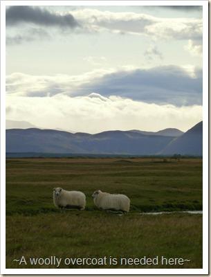 Iceland 2009 006