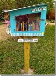 Little FreeLibrary 3