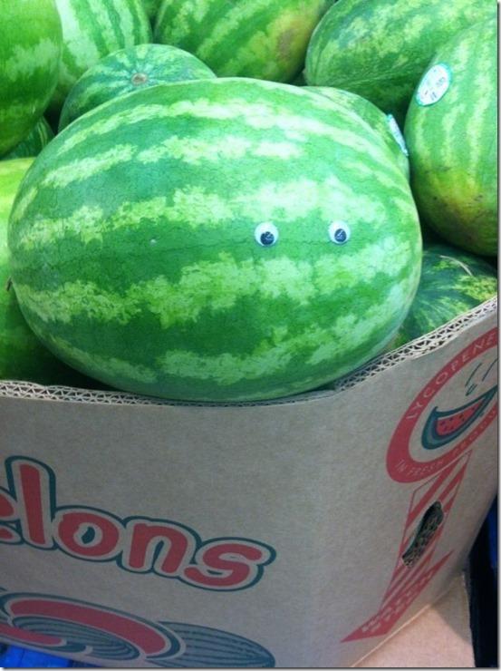 googly-eyes-funny-37