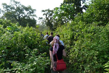 Safari pe jos in jungla