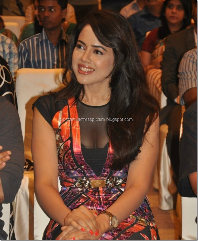 actress_sameera_reddy_hot_in_black_dress