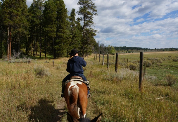 Horseback riding in Jackson Hole