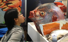 Staring eye-to-eye at an enormous (real, not fake!) fish at the Boston Seafood Show