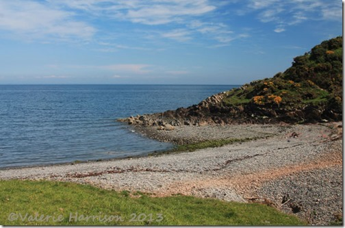 58-Portankill