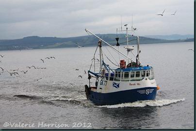 22-fishing-boat