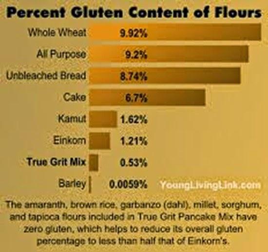 einkorn gluten