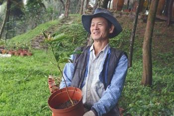 Lai Pei-yuan detto il re degli alberi a Taiwan