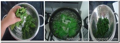 espinafre 1