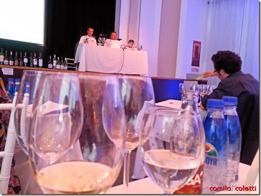 seminario-vinhos-chile2-vinho-e-delicias