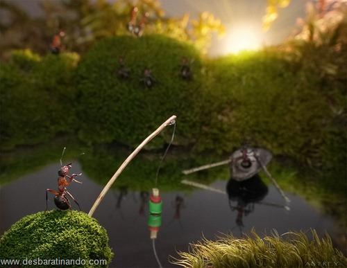 formigas inacreditaveis incriveis desbaratinando  (71)