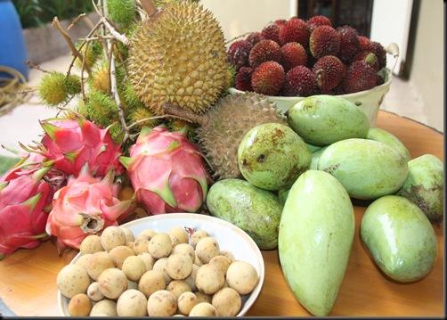 Buah-buahan tempatan 017