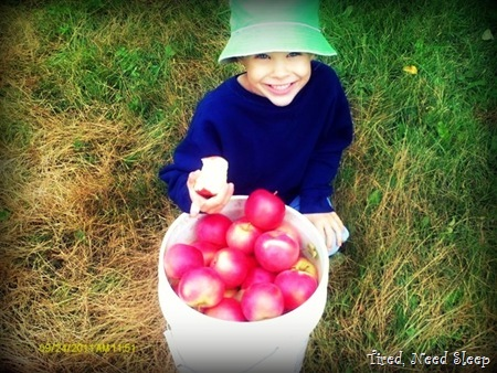 M with a freshly picked bucket of apples