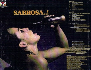 Salsa back