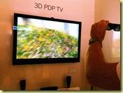 2010 TV 3D