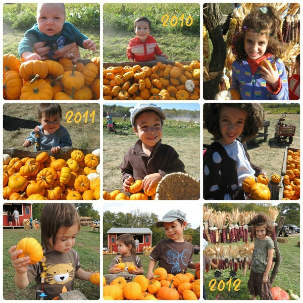 pumpkincollage
