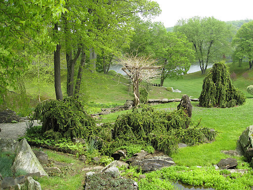 In the main garden, carefully placed, sculptural shrubs play out a drama of each visitor's imagining.