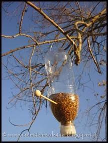Ghiotte leccornie per gli uccellini dell'OrtoQua (42)_thumb[1]