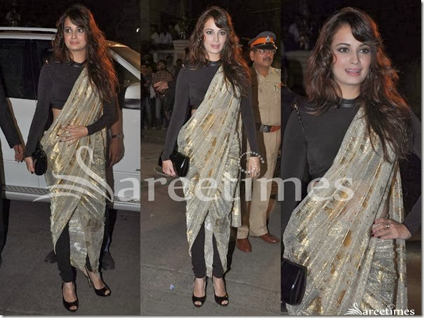 Dia_Mirza_Saree_Designs