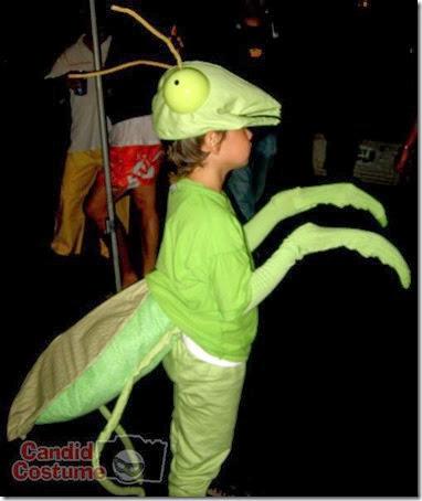 mantis religiosa disfrazcasero (4)
