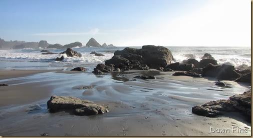 Harris Beach_235