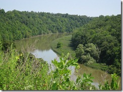 Genesee River 2010