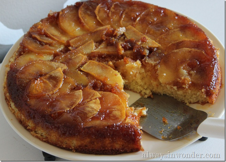 caramelized apple skillet cake (2)