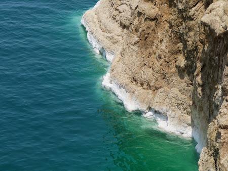 Malurile sarate de la Marea Moarta