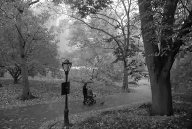 rainy-day-stroll