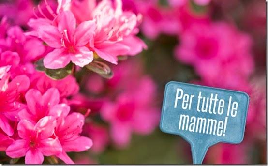 azalea-ricerca-airc-festa-mamma