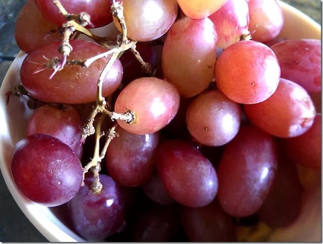 grapes-public-domain-pictures-1 (2226)