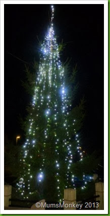 Bilbrook Christmas Tree