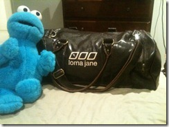 cookiemonster 002