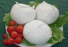 mozzarella con pomodorini su foglie di lattuga