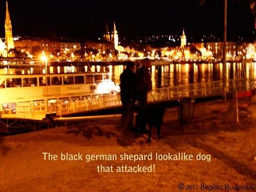 attack_20111010_1
