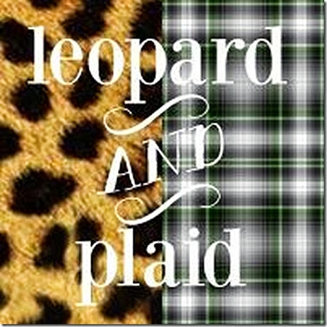 leopard and plaid 3