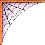 CNR Spider's Web.jpg