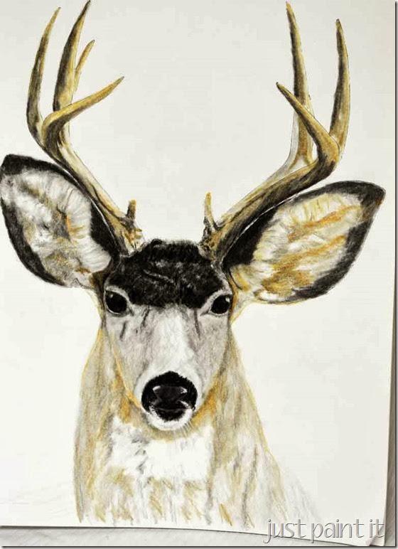 Deerhead-Sketch-G
