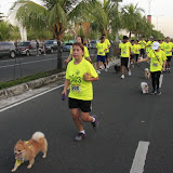 Pet Express Doggie Run 2012 Philippines. Jpg (78).JPG