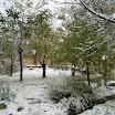 2013-sotosalbos-nieve8.jpg