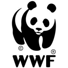 World Wildlife Fund Giant Panda