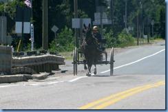 7727 Ontario Trans-Canada Hwy 17 - Amish buggy