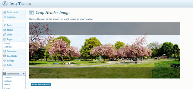 Cropping your header on Wordpress