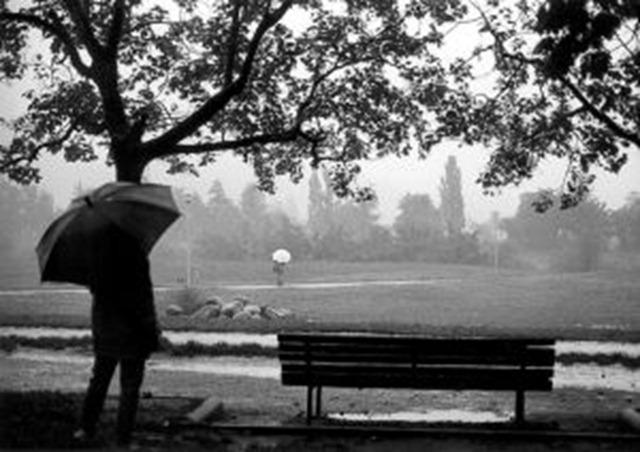 637347_to_take_a_walk__under_the_rain_