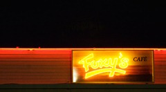 Neons-of-Florida-11